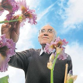 Simon Dodsworth admiring his Irises